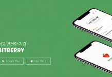 Bitberry website